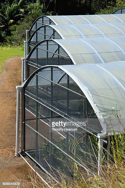 close-up of shade houses on organic farm - timothy hearsum stock-fotos und bilder