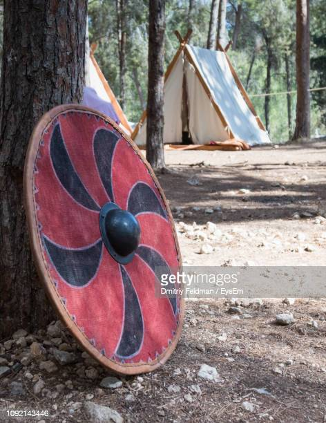 Close-Up Of Shield By Tree Trunk