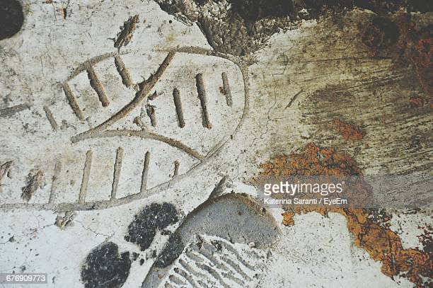 close-up of shoeprint - shoe print stock pictures, royalty-free photos & images