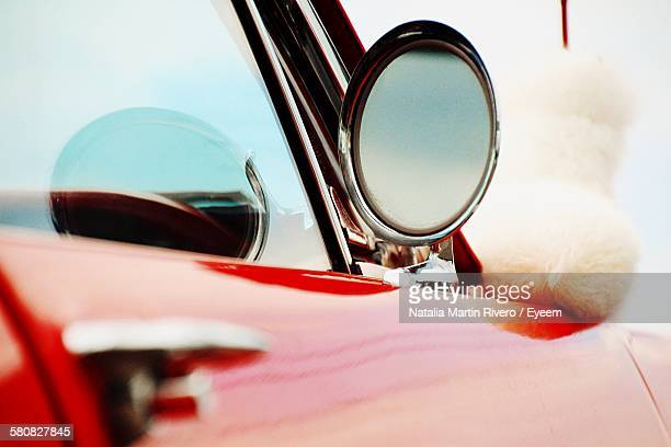 Close-Up Of Side-View Mirror Of Car With Dog In Background
