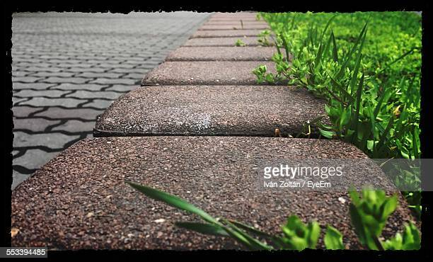 close-up of sidewalk - iván zoltán stock pictures, royalty-free photos & images