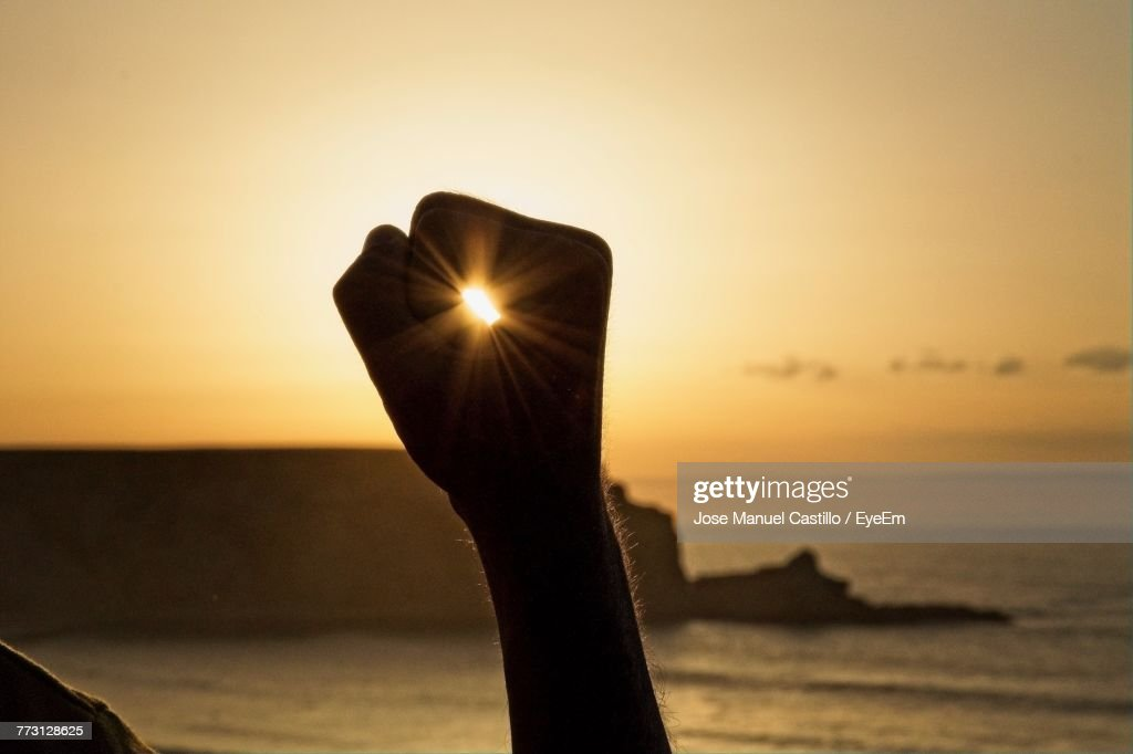 Close-Up Of Silhouette Hand Against Sea During Sunset : Photo