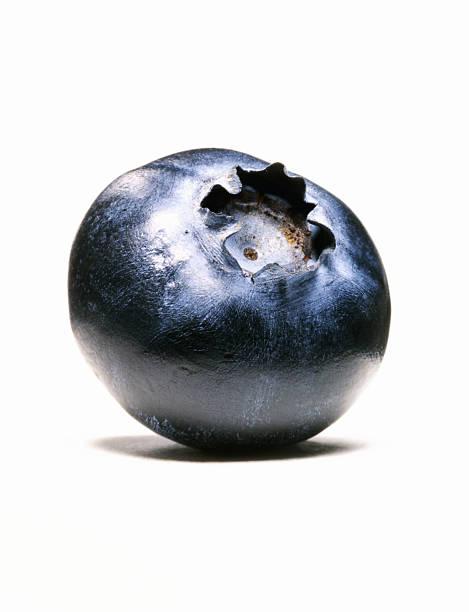 close-up of single blueberry - 藍莓 個照片及圖片檔