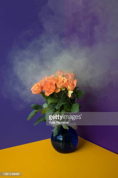close-up of smoking orange rose flowers in vase on the yellow-green background - green colour ストックフォトと画像
