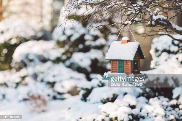 close-up of snow covered birdhouse - bortes stock-fotos und bilder