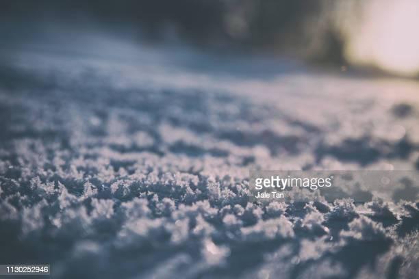 close-up of snow, hokkaido, - 泥沼地 ストックフォトと画像