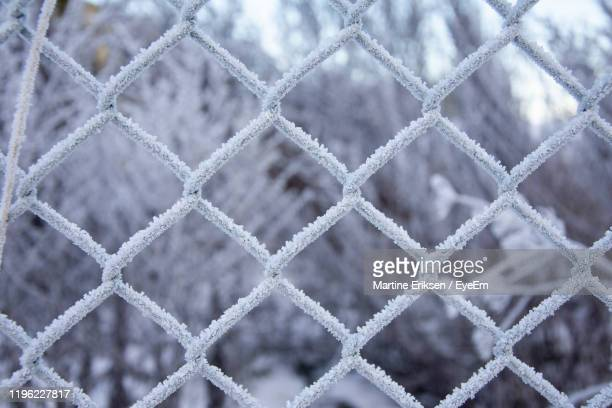 close-up of snow on fence - eriksen stock pictures, royalty-free photos & images