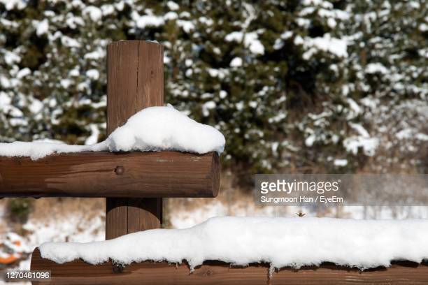 close-up of snow on wood during winter - gwangju stock pictures, royalty-free photos & images
