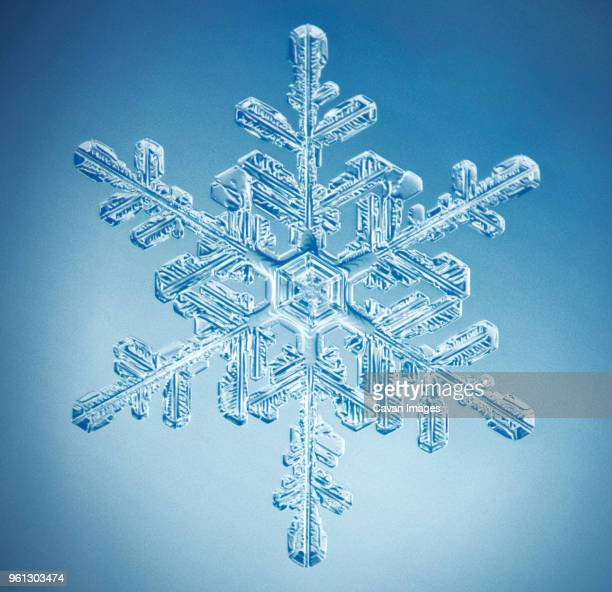 close-up of snowflake against blue background - snowflakes stock photos and pictures