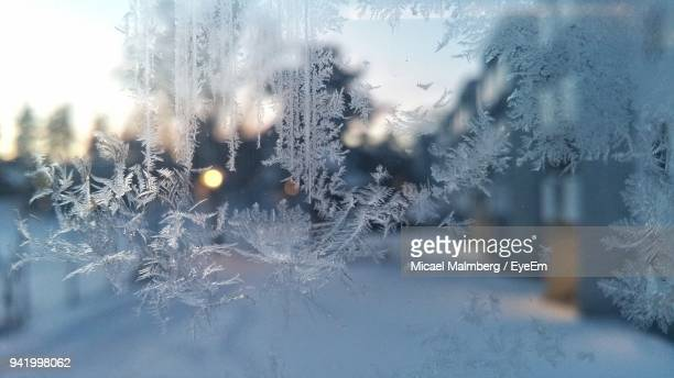 close-up of snowflakes on glass window - winter weather stock pictures, royalty-free photos & images