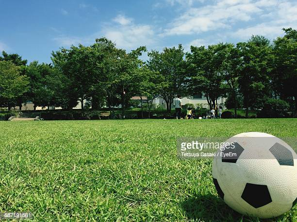 Close-Up Of Soccer Ball On Grass Against Trees At Park