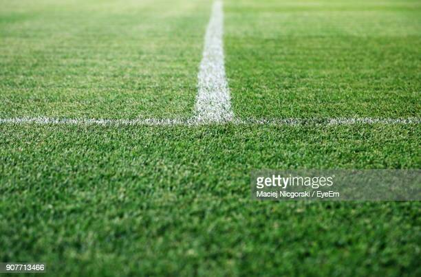 close-up of soccer field - football field stock pictures, royalty-free photos & images