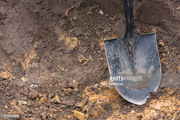 close-up of spade shovel being used to dig a hole in soil - gräva bildbanksfoton och bilder