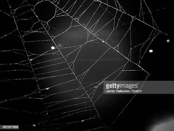 close-up of spider web outdoors - ragnatela foto e immagini stock