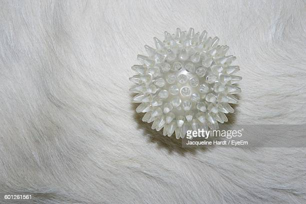 close-up of spiked massaging ball on cow - hairy balls stock photos and pictures