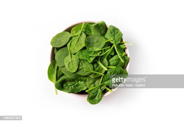 close-up of spinach in bowl on white background - spinach stock pictures, royalty-free photos & images