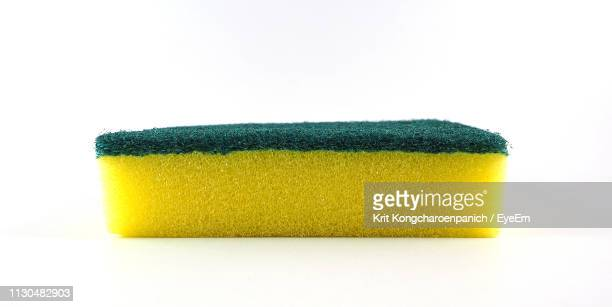 close-up of sponge against white background - sponge stock photos and pictures
