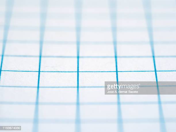 Close-Up of squared sheet of paper from a notebook.