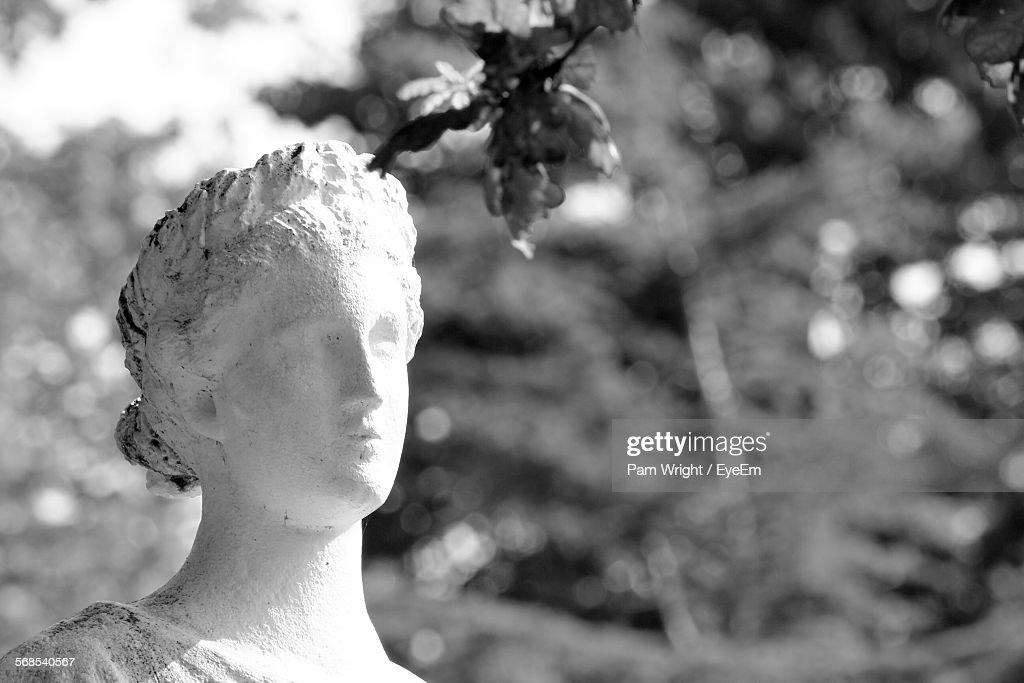 Close-Up Of Statue In Park : Stock Photo