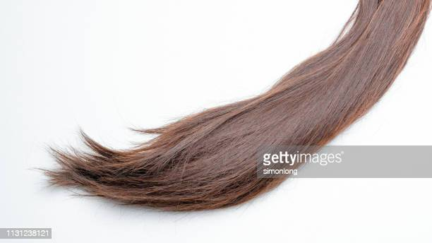 close-up of straight hair with white background - brown hair ストックフォトと画像