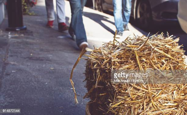 Close-Up Of Straw With People Walking In Background