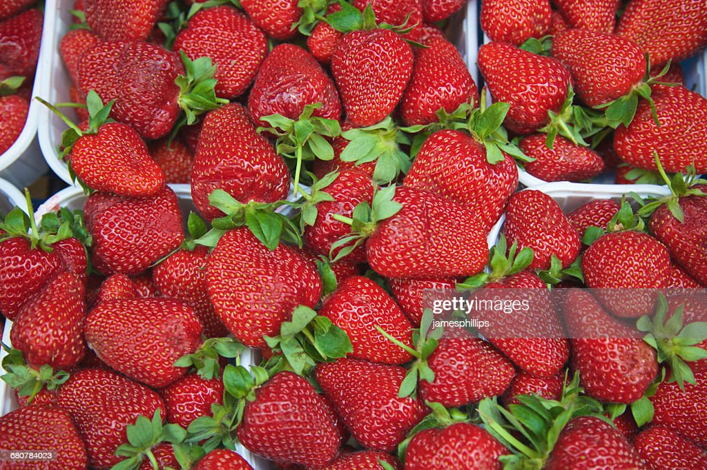 Close-up of strawberry punnets : Stock Photo