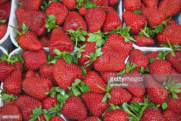 Close-up of strawberry punnets