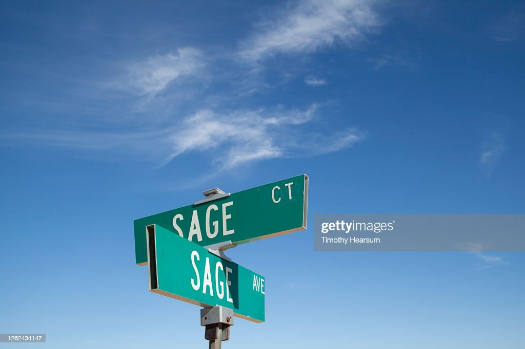 Close-up of street signs for Sage Court and Sage Avenue against a blue sky : Foto de stock