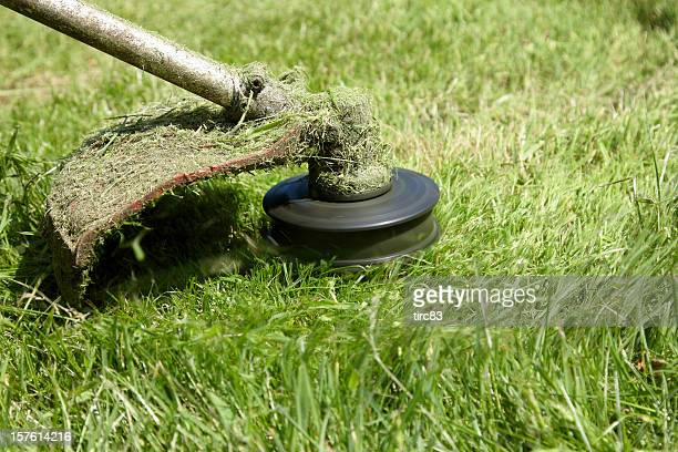 Closeup of strimmer on the grass