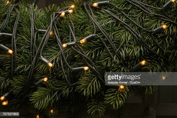 Close-Up Of String Lights Hanging On Christmas Tree