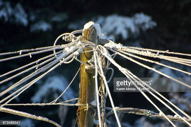 close-up of strings attached on pole during winter - karen mckay stock pictures, royalty-free photos & images