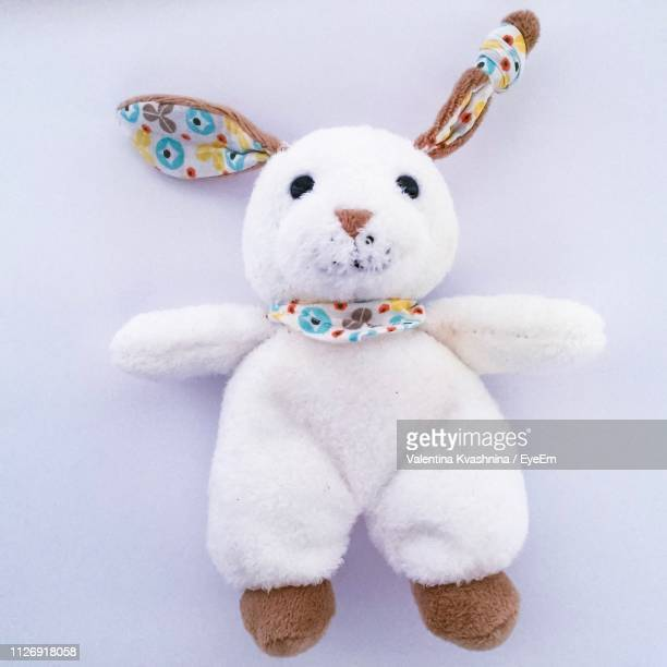 close-up of stuffed toy against white background - ぬいぐるみ ストックフォトと画像