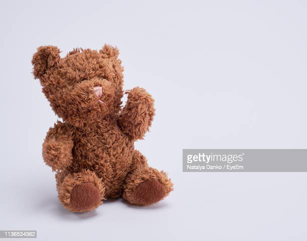 close-up of stuffed toy against white background - teddy bear stock pictures, royalty-free photos & images