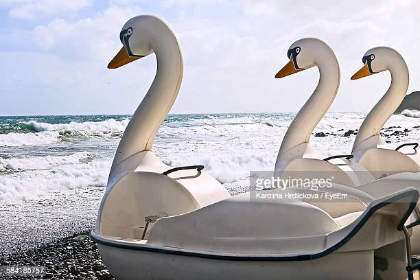 Close-Up Of Swan Boats At Sea Shore Against Sky