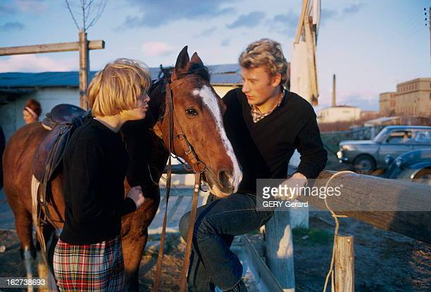 CloseUp Of Sylvie Vartan And Johnny Hallyday en 1963 Sylvie VARTAN et Johnny HALLYDAY avec un cheval Sylvie vêtue d'un pantalon à carreaux et pull...