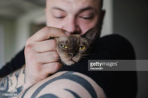 close-up of tattooed man cuddling burmese cat - burmese cat stock pictures, royalty-free photos & images