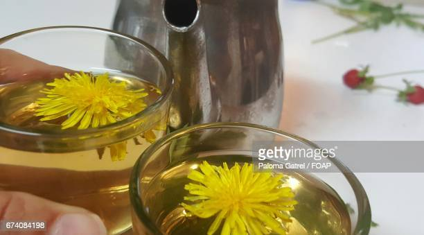 Close-up of tea with yellow dandelion