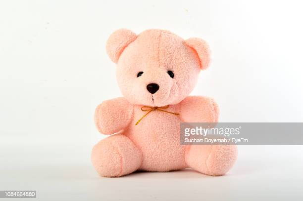 close-up of teddy bear against white background - テディベア ストックフォトと画像