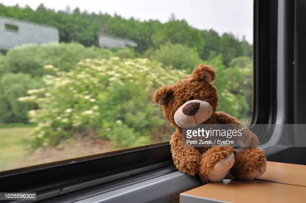 close-up of teddy bear on window sill - teddy bear stock photos and pictures