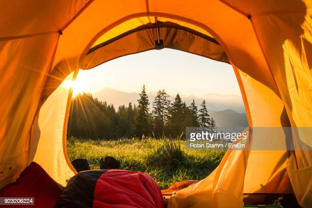 close-up of tent on grass field against sky - camping stock photos and pictures