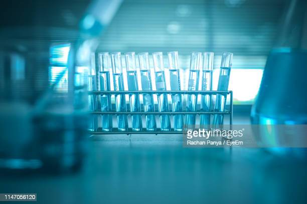 close-up of test tubes in rack - test tube stock pictures, royalty-free photos & images
