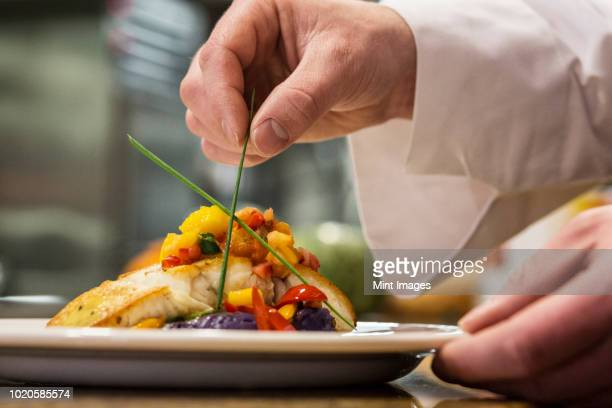 A closeup of the hands of a chef putting the final dressing on a plate of fish in a commercial kitchen,