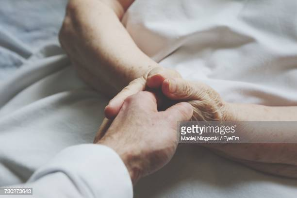 Close-Up Of The Hands Of A Senior Woman