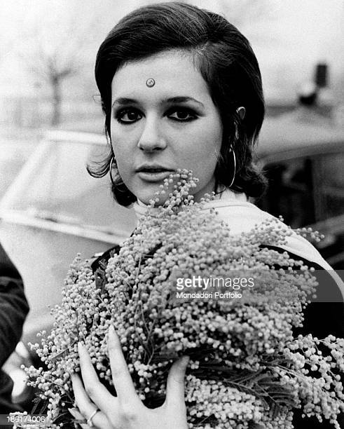 Closeup of the Italian singer actress presenter showgirl and impersonator Loretta Goggi keeping a bunch of mimosa in her hands on her forehead a...