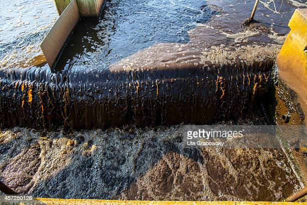 Closeup of the sedimentation tank of a sewage treatment plant on August 21 in Isselburg Germany Photo by Ute Grabowsky/Photothek via Getty Images