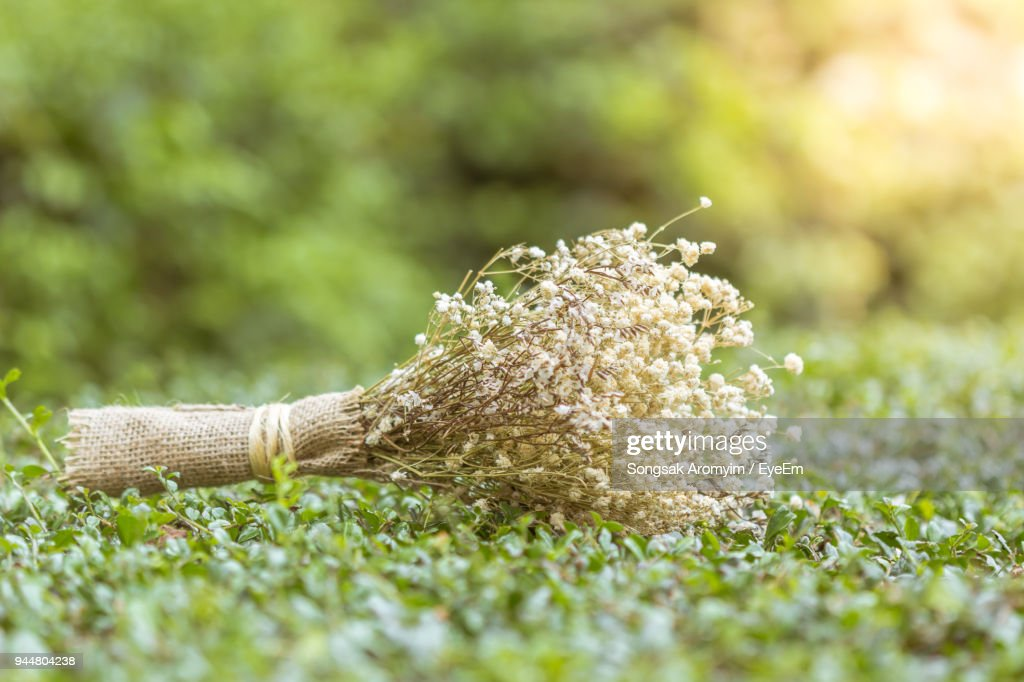 Close-Up Of Tied Up Dried Flowers On Grass : Stock Photo