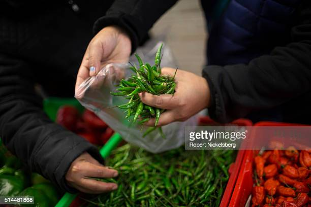 Closeup of Tika Gurung's hands as she shops for peppers with her cousin Hema Gurung at the Central Market grocery store Burlington Vermont December...