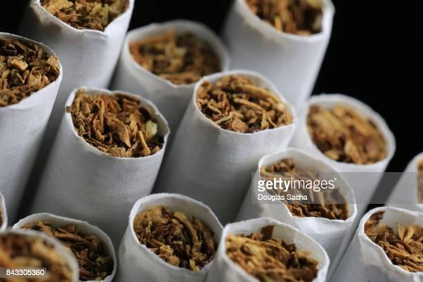 close-up of tobacco in cigarettes - tabakwaren stock-fotos und bilder