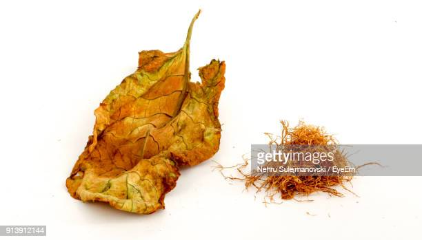 close-up of tobacco product and leaf over white background - tabakwaren stock-fotos und bilder