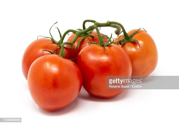 close-up of tomatoes against white background - tomato stock pictures, royalty-free photos & images